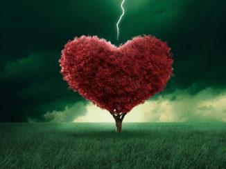 Frasi belle vita amore